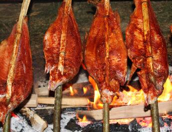 Ribarska večer na bajeru u Slavonskom Kobašu